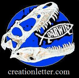 Creation Letter Large Banner 253 x 250