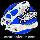 Creation Letter Small Banner 143 x 141