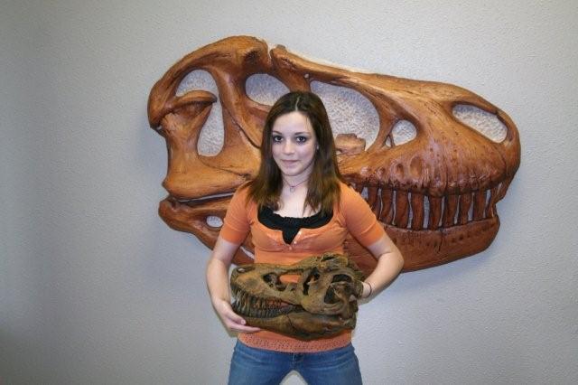Dino skulls